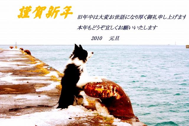IMG_6427_20100101115803.jpg