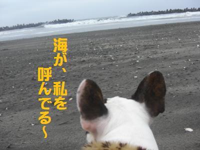 12_20100227222457.jpg