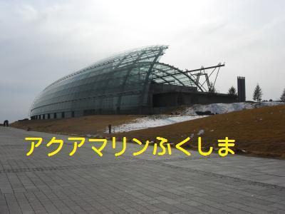 14_20100215100800.jpg