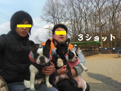 15_20100201121743.jpg