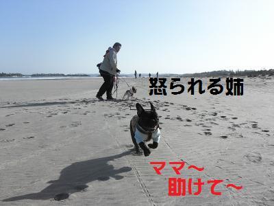 7_20100318221244.jpg