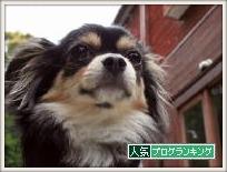 048_20111001010438.jpg