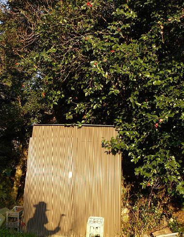 トマオ作の小屋♪