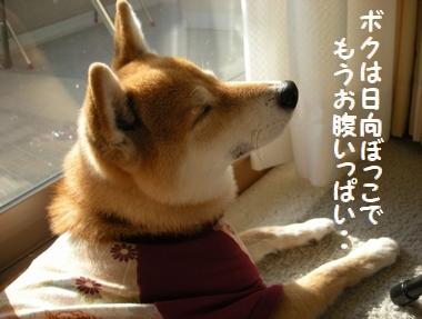 037_20091218131426.jpg