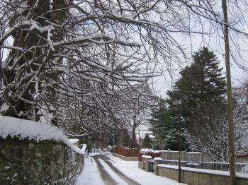 Fernielaw snow