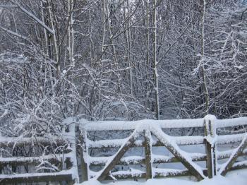 Snowy+gate_convert_20100106044620.jpg