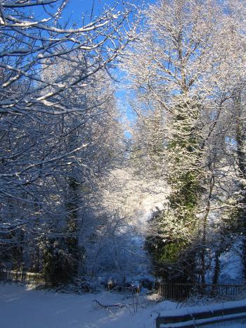 snow+snow+snow_convert_20100106045556.jpg