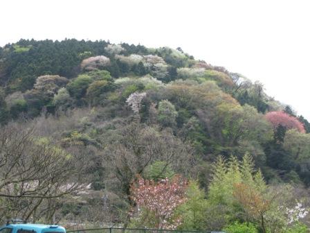 阿部倉山4