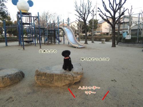 DSCN0689_convert_20130223012007.jpg