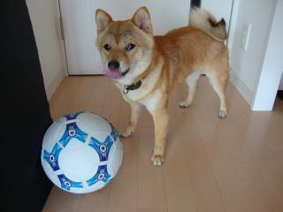 サッカー青年