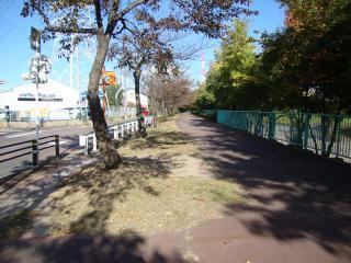 川沿い散歩コース