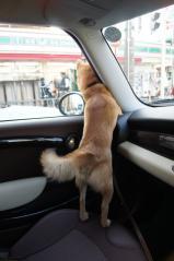 ご機嫌ドライブ①