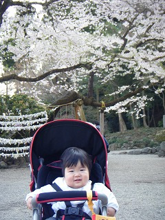 s-高麗神社