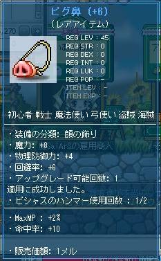 Maple111008_040842.jpg