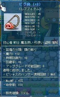 Maple111008_041024.jpg