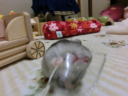 食べたいでしゅ!