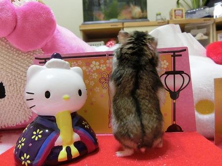 キティちゃ~ん