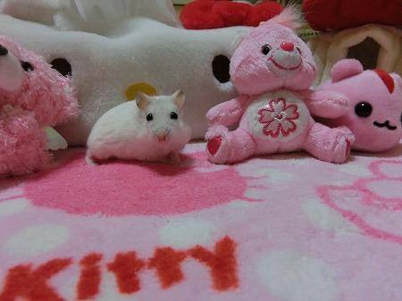 ピンクのお友達?
