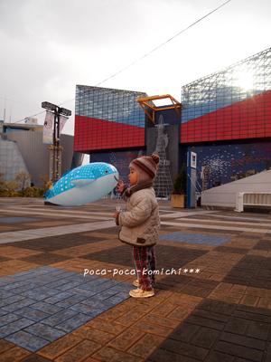 2012-01-05_0184.jpg