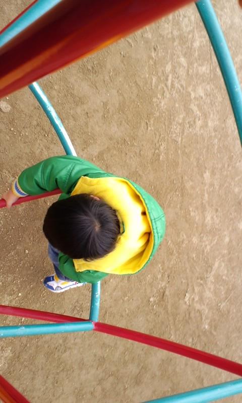 moblog_54d596a5.jpg