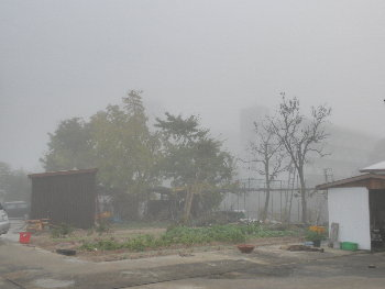 こんなに濃い霧は珍しい