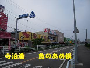 DSCN5567.jpg