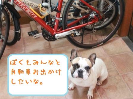 自転車 トル