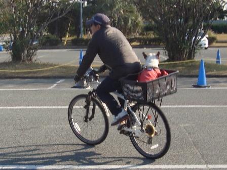 11.21トルくんサイクリング♪3