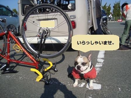 11.21自転車屋