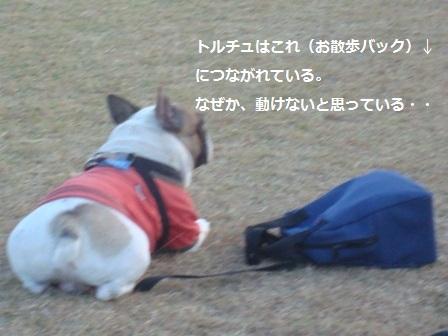 11.21雁ノ巣レクレーションセンター