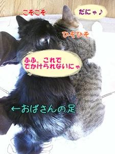 201002057.jpg