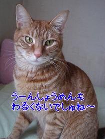 201002174.jpg
