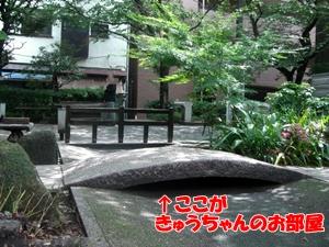 201006152.jpg