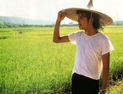Michael+Jackson+l_254d0fcb38084c6fbff6f4da2983.jpg