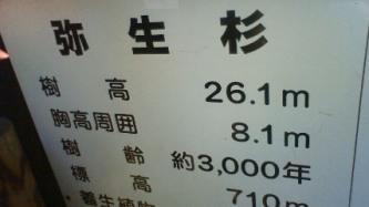 201008021151001.jpg