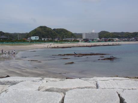 興津海岸1