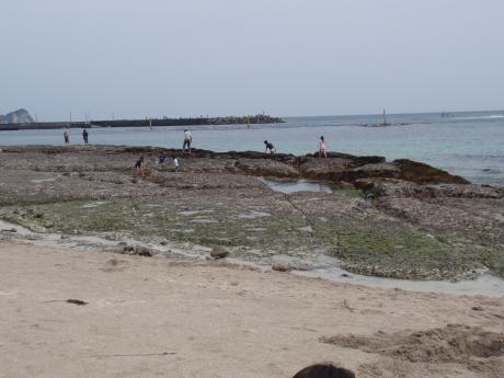 興津海岸2