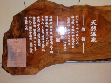 tateyama_2010_onsen_1