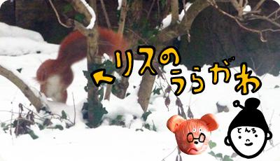 2013_0204_01_02.jpg