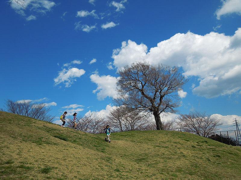 120404榎の丘の春