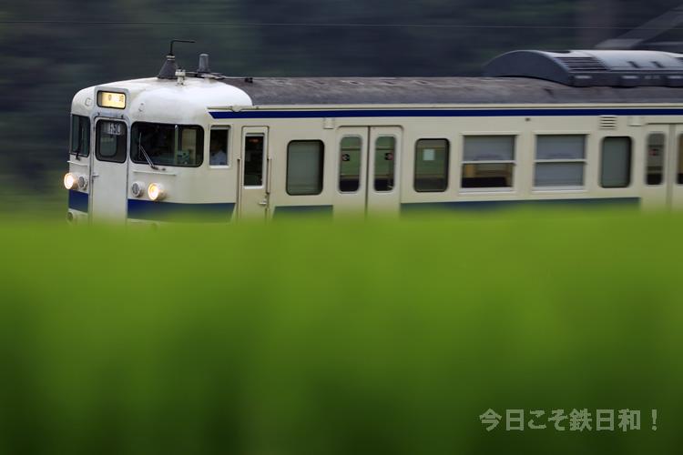 _MG17962.jpg