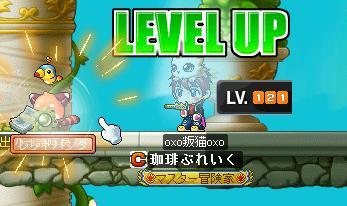 Maple001_20100430222712.jpg