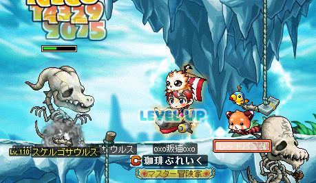 Maple002_20100513130541.jpg