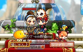 Maple003_20100407112717.jpg