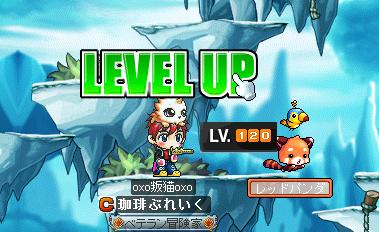 Maple003_20100425220026.jpg