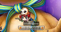 Maple004_20100407112717.jpg