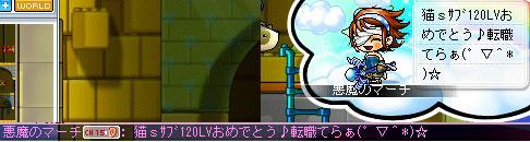 Maple010_20100425220025.jpg