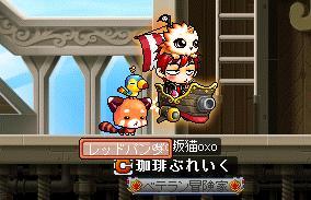 Maple016.jpg