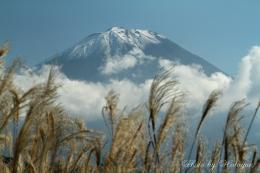 西湖畔の富士山5a