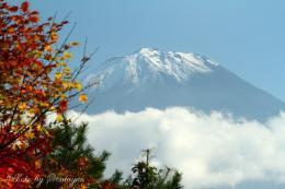 西湖畔の富士山8a